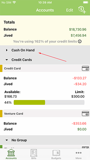 ClearCheckbook iOS App - Minimized Group example